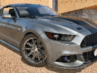 2015, Ford Mustang GT500 Eleanor, Bok