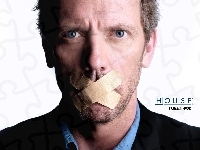 Hugh Lauriego, Dr. House, Plastry