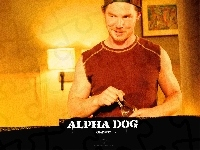 Shawn Hatosy, Alpha Dog