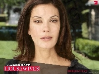 Teri Hatcher, Desperate Housewives, napis