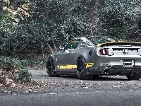 Tuning, Ford, Mustang, Chicane