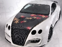 Bentley Continental, Tuning