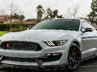 Ford Mustang GT350R, 2018