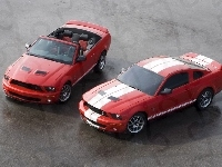 Ford Mustang, Mustang Shelby, Cabrio