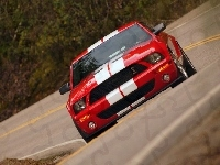 Ford Mustang, Shelby, Super