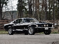 Ford Mustang Shelby GT350, Zabytkowy, 1967