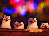 The Penguins of Madagascar, Pingwiny z Madagaskaru, Bajka