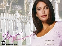 płot, Desperate Housewives, Teri Hatcher, napis