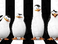 The Penguins of Madagascar, Pingwiny z Madagaskaru, Postacie