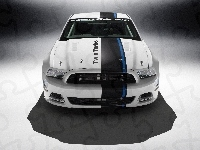 Twin-Turbo, Ford Mustang, Cobra Jet, Concept
