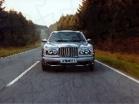 Ulica, Bentley Arnage, Drzewa