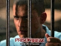 Wentworth Miller, Prison Break, kraty