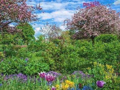 Puzzle Drzewa, Kwiaty, Ogród, Kwitnące, Krzewy